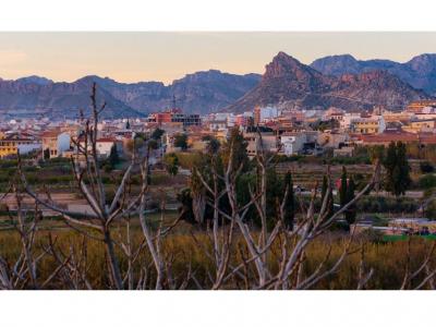 Archena volverá a estar presente y exponer su mejor oferta en la Feria Internacional de Turismo. FITUR - Madrid 2020